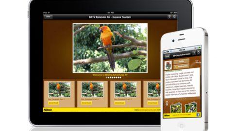 Birding Adventures 1